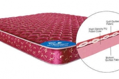 5-inch-flextra-foam-queen-size-mattress-by-centuary-mattress-5-inch-flextra-foam-queen-size-mattress-fafsjt