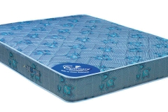 censation-6-inch-thick-queen-size-pocket-spring-mattress-by-centuary-mattress-censation-6-inch-thick-dlsu9e