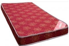 coirfit-beetle-mattress-4-10-cm-large_6dbe288e289da6fcbf92b84a6077e6d4